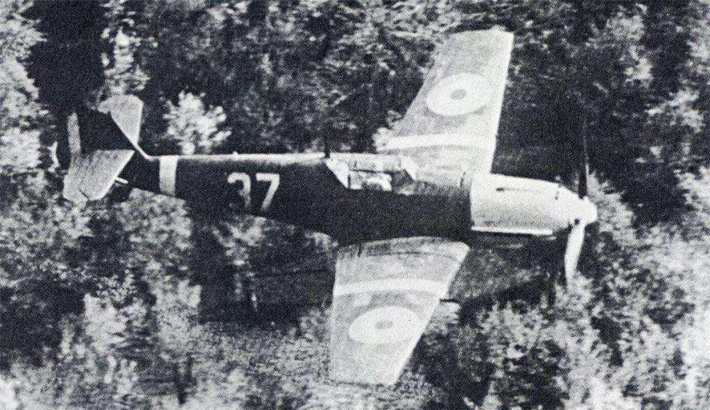 Romanian Air Force-1-bf-109e-rraf-7fg-37-russia-1941-01rumania-jpg
