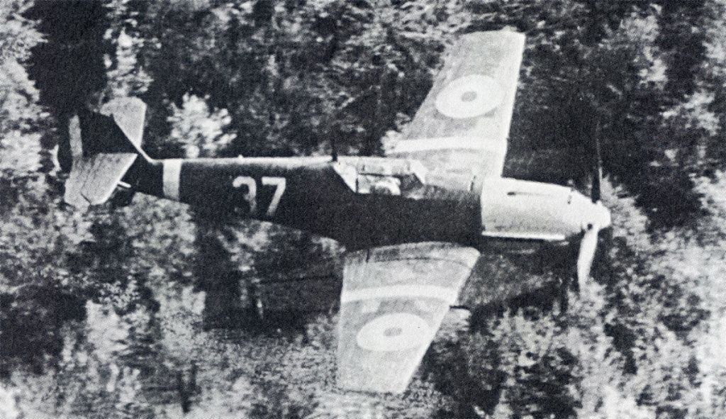 -1-bf-109e-rraf-7fg-37-russia-1941-01rumania-jpg