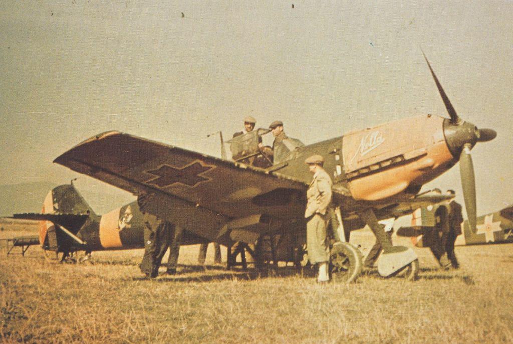 Romanian Air Force-1-bf-109e-rraf-7fg57esc-26-stefan-greceanu-russia-1941-01-jpg