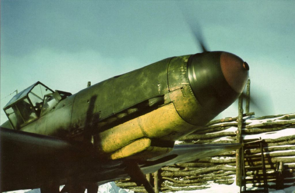 Hungarian Air Force-1-bf-109f-rhaf-101.5-v-08-hungary-1942-01.jpg