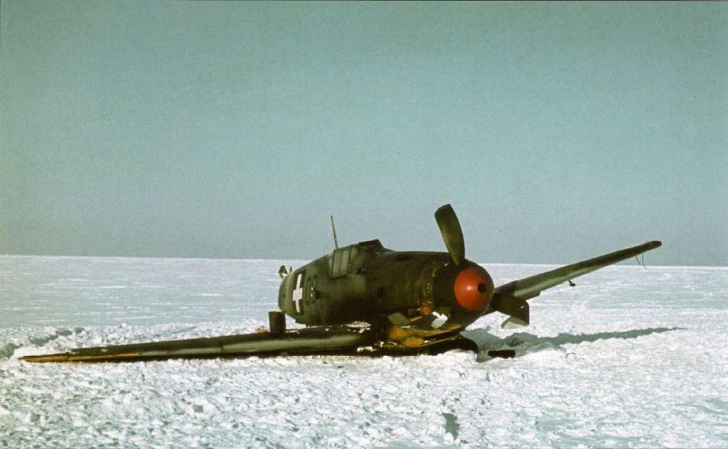 Hungarian Air Force-1-bf-109f-rhaf-101.5-v-08-hungary-1942-03.jpg