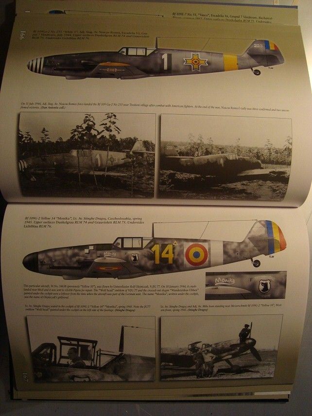 Romanian Fighter Colours, 1941-1945-4.jpg