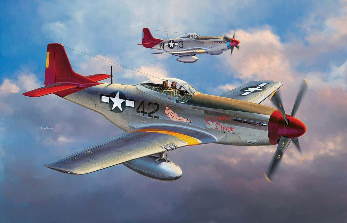 Creamer S Dream Red Tails P 51d From The Tamiya Kit In 1