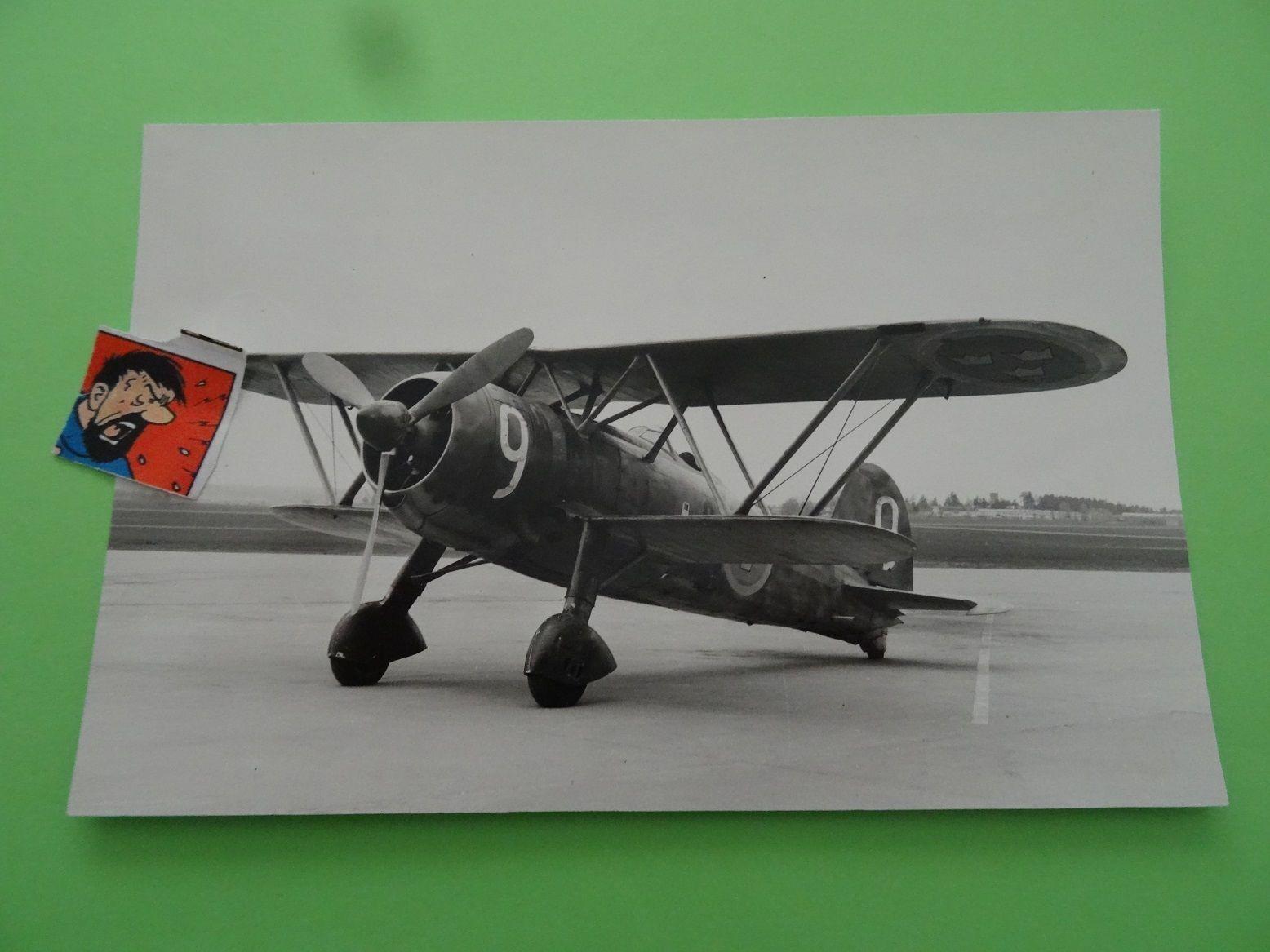 Fiat CR.42 Falco_13_swedish airforce.jpg