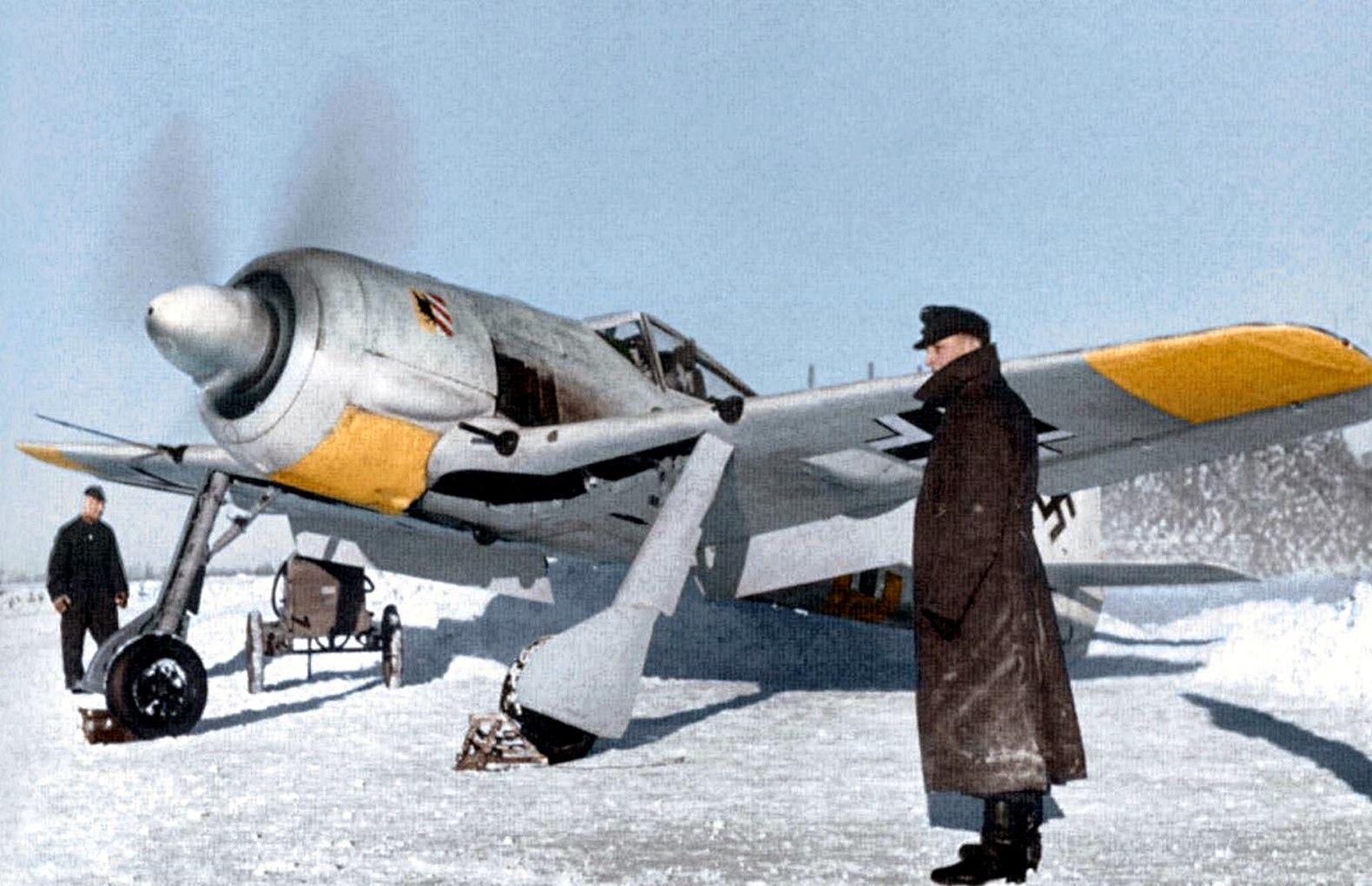 fw-190 winter.jpg