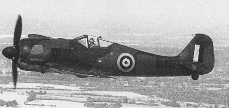 My FW-190-fw-190_0022.jpg
