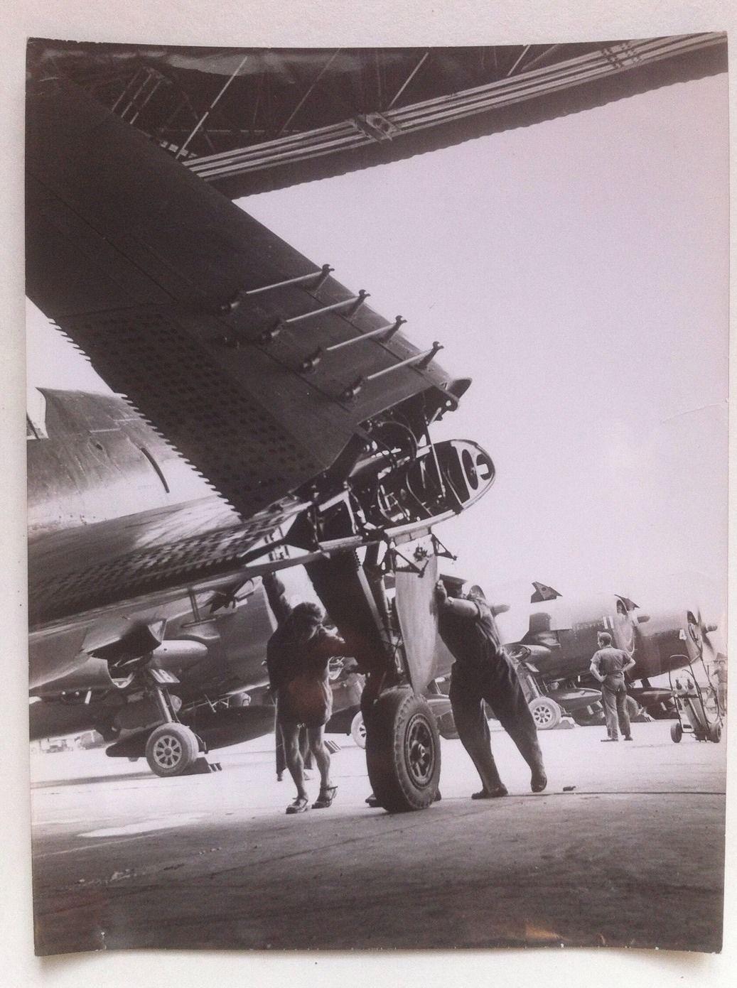 Grumman F6F Hellcat_08.JPG