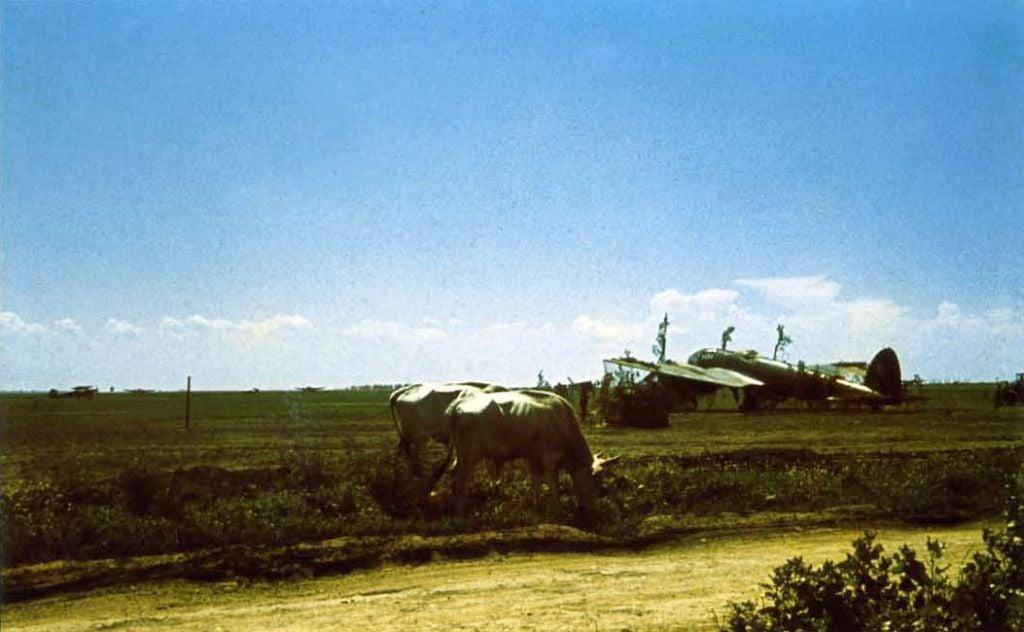 Hungarian Air Force-heinkel-111-007-jpg