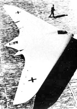 Horton Brothers Flying Wings-ho229-jpg