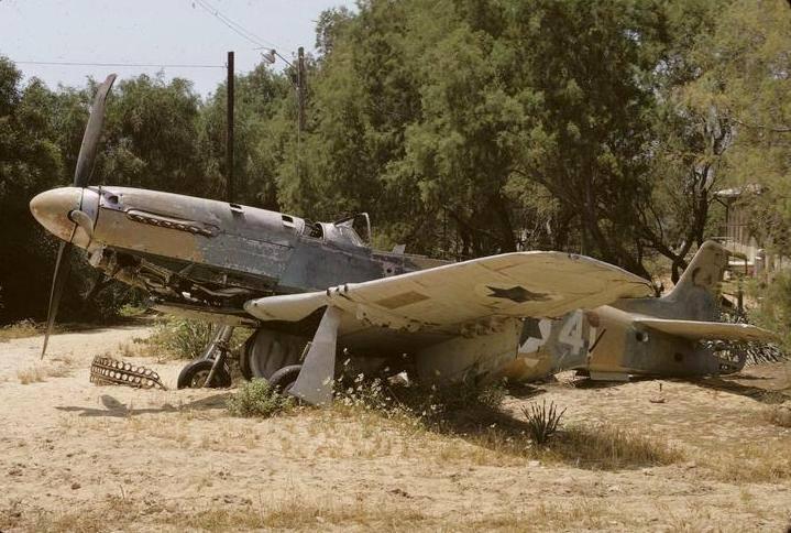 IAF #41.jpg