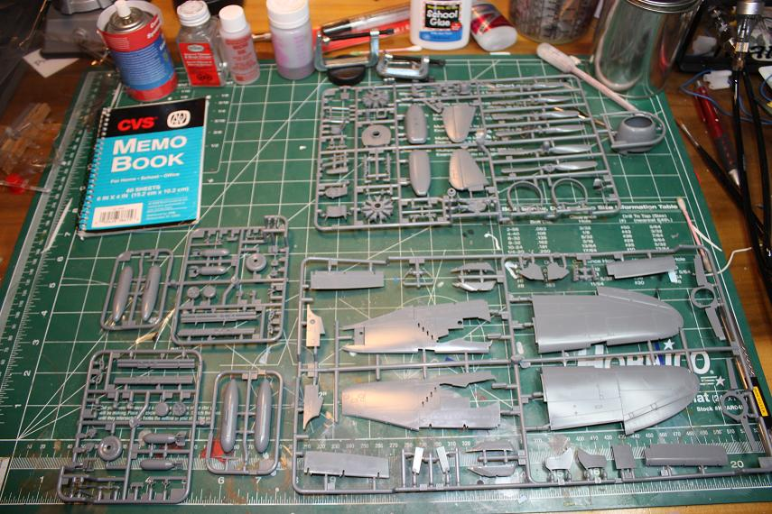 "**** DONE: 1/48 P-47D Thunderbolt ""Razorback"" - Your Favorite Aircraft of All Time GB-img_5028-resized-20.jpg"