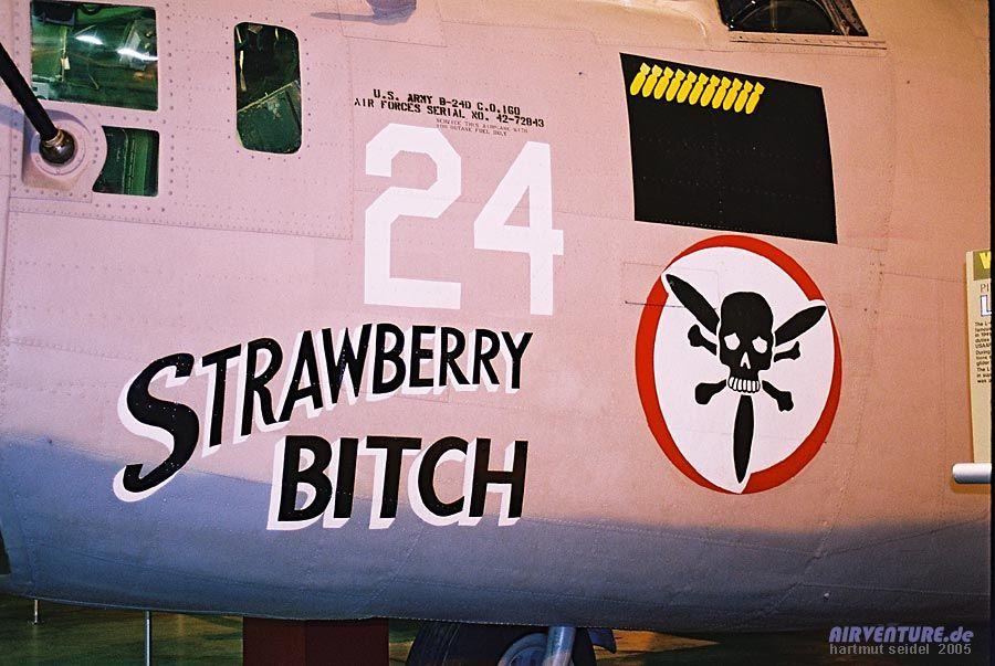 -noseart_dayton_strawberry_bitch_2.jpg