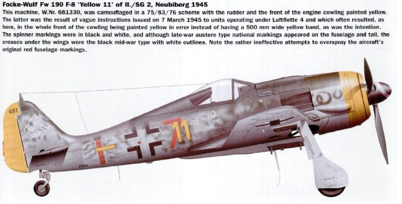 Looking for late Fw190A with RLM 81/82 uppers  Any leads? | Aircraft
