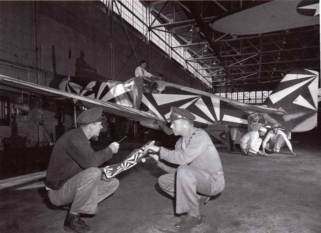 Resultado de imagen de p-51 black and white
