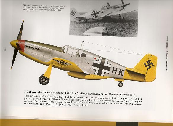 my new book-p51-1.jpg