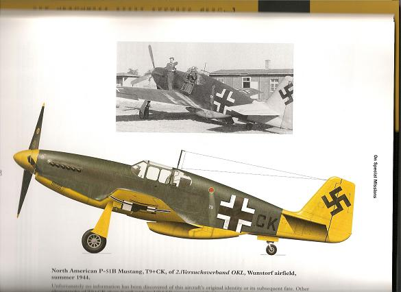 my new book-p51.jpg