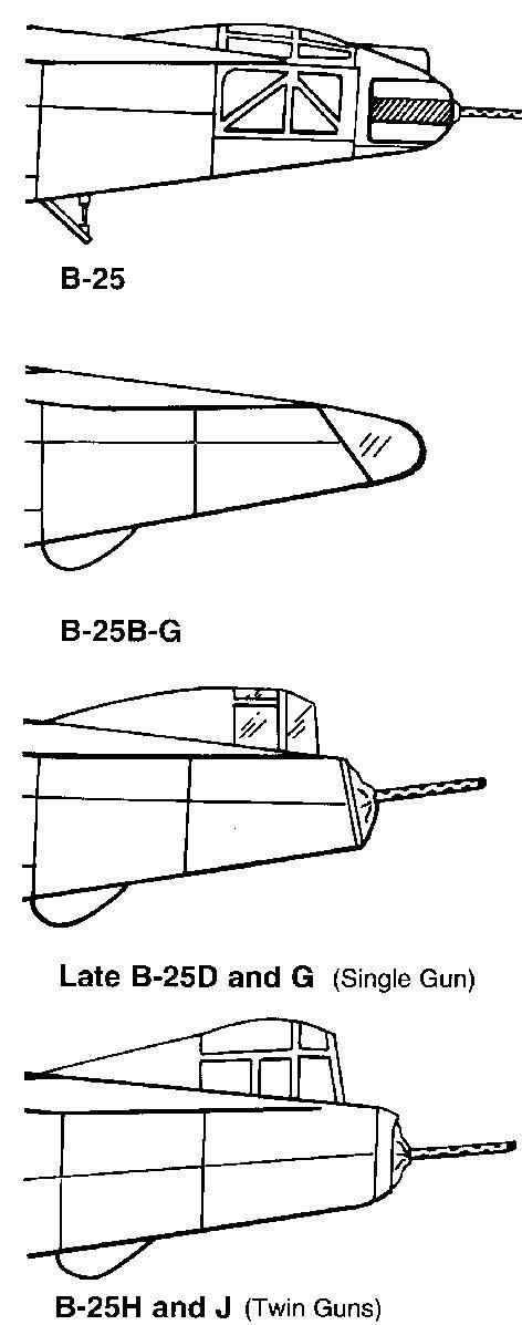 tail 1.JPG