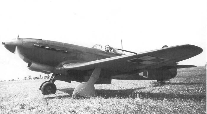 yak9m-2.jpg